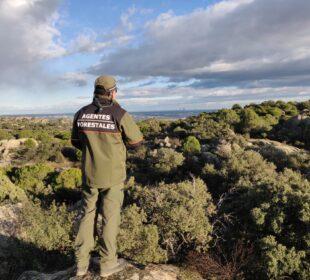 Agente forestal cerca de Madrid. Foto: UGT Forestales.