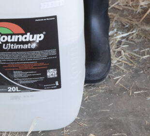 Un envase del herbicida Roundup, de Monsanto.