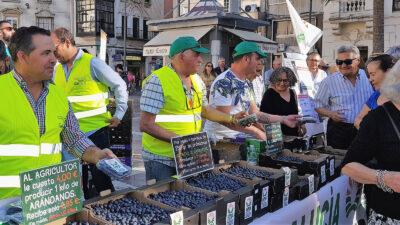 Reparto de arándanos organizado por UPA en Huelva el 13 de mayo de 2019.