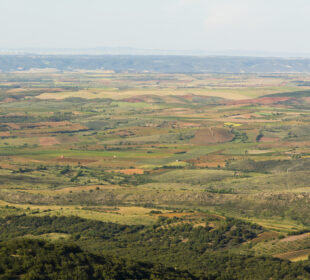Paisaje rural en Paniza, en la comarca de Cariñena (Zaragoza)