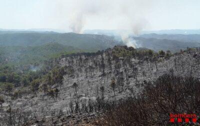 Incendio en la Ribera del Ebro, en Tarragona.