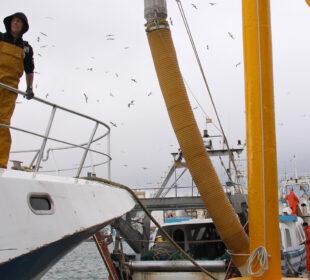 Un pescador en su barco.