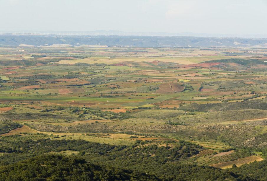 Parcelas agrícolas en la provincia de Zaragoza.