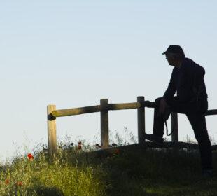 Un hombre observa un paisaje rural, en Zaragoza.