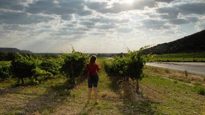 Una joven tomando fotografías en un viñedo en la Ribera del Duero.