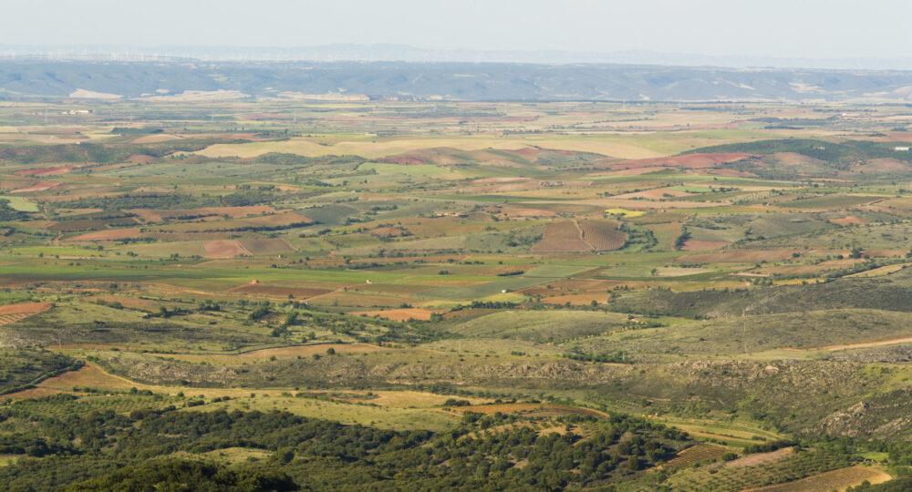 Parcelas en la comarca de Cariñena (Zaragoza)