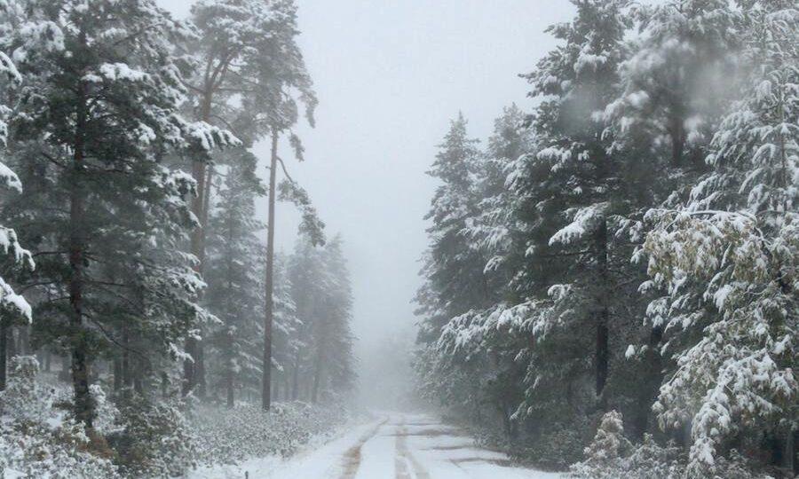 Nieve en Orea