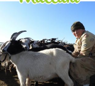 Revista Mallata número 1