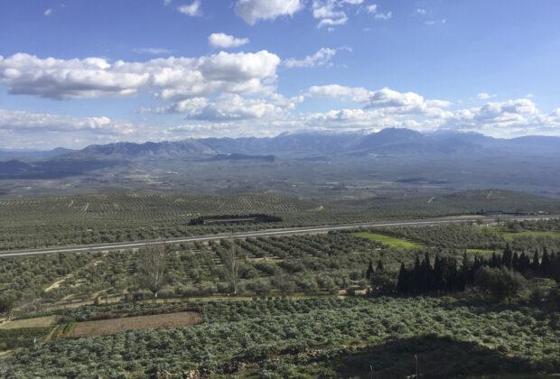 Tierras de cultivo de olivar, en Baeza (Jaén)