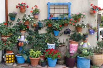 Tiestos en la pared de una casa en Orea (Guadalajara).