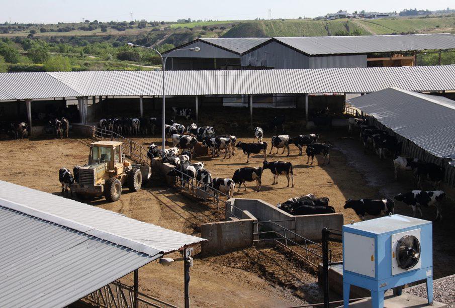 Granja láctea, en Castilla y León. Foto: Joaquín Terán