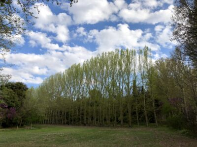 Cielos en Aranjuez (Madrid)