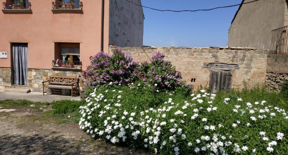 Primavera en Alcanadre (La Rioja).