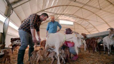 Ruralitas, el nuevo programa de La 2