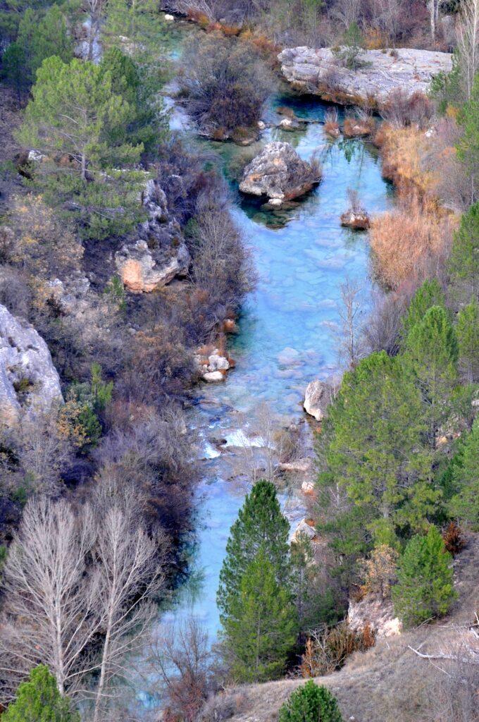 Aguas cristalinas en el Alto Tajo, donde abunda la trucha común. Autor: Jonathan Sayago.