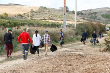 Agricultores se dirigen a realizar la vendimia, en Pedrosa de Duero (Burgos). Foto: Joaquín Terán.