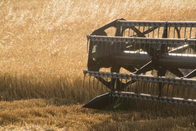 Recogida de cereal al sureste de la Comunidad de Madrid. Foto: EDR.