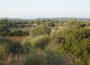 Un paisaje típico balear, en la isla de Menorca.