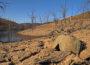 Los efectos de una sequía en un pantano en California. Autor: Ben Amstutz (Creative commons)