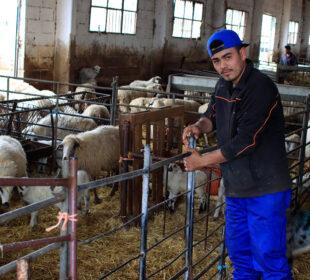 Un joven ganadero, en una granja al norte de Madrid.