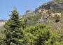 Paisaje de la Sierra de las Nieves