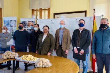El equipo de la Consellería de Agricultura de Baleares junto al sector, en el anuncio del mantenimiento de las exportaciones de patata al Reino Unido.