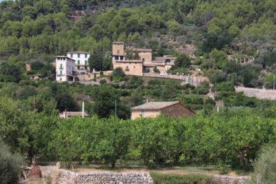 Un paisaje rural en Sóller.