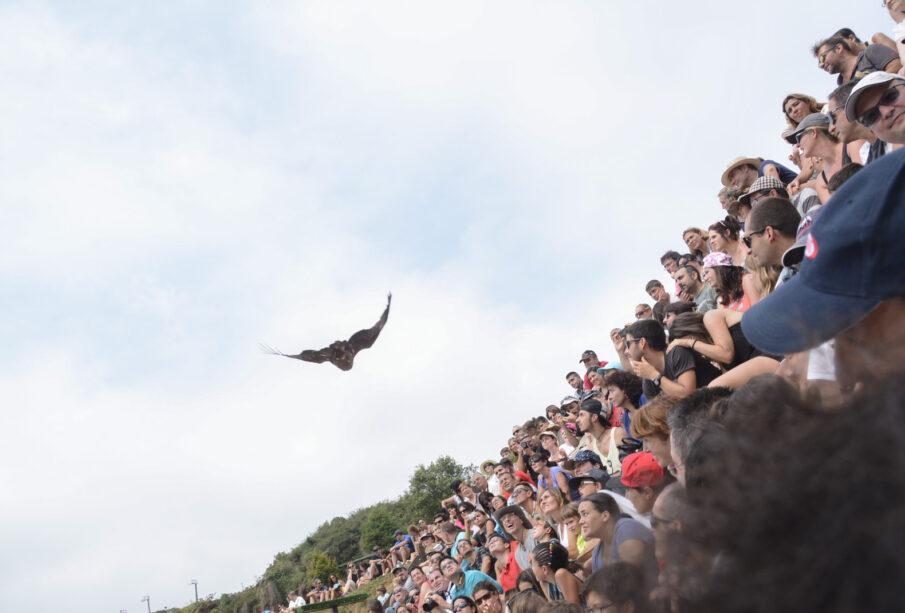 Asistentes a un espectáculo de cetrería en Cabárceno (Cantabria), uno de los destinos de turismo rural más deseados. Foto: EDR.