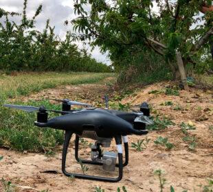 Un dron listo para levantar el vuelo en un campo de frutales.