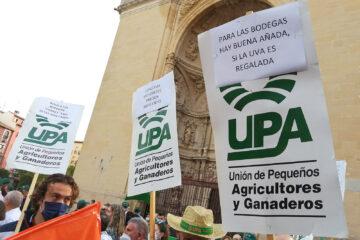 Manifestación de viticultores esta semana en Logroño para exigir precios justos para las uvas.