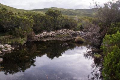 Una pequeña laguna en el interior de Orense. Foto: EDR.